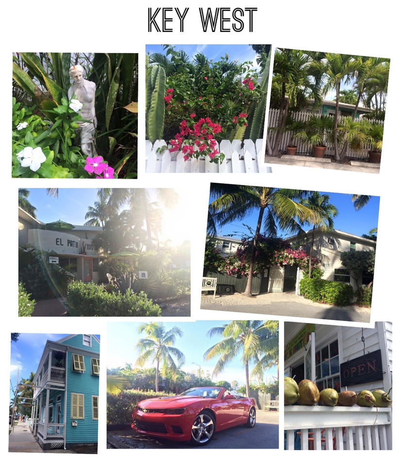 Natalie Soul Key West Collage